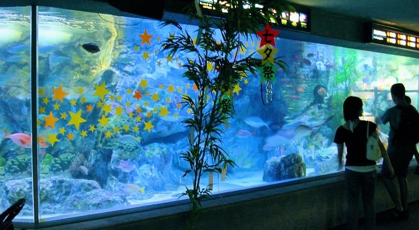 Hackare tog sig in på casino via akvarium