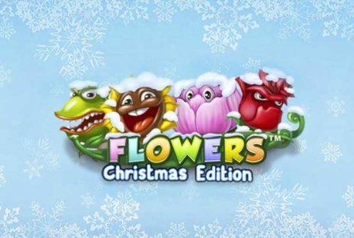 flowers-christmas-edition-slot