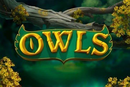 Owls slot på casino