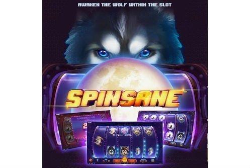 Spinsane online slot