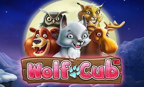 Wolf Cub erbjuder bonusfunktioner och freespins i mängder