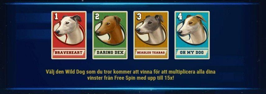 Bilden visar olika wilds i casinospelet Wildhound Derby. Wilds kommer i form av hundar som används för att tävla mot varandra i spelets frispelsläge.